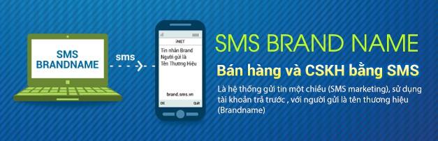 brandname-sms-marketing-banner